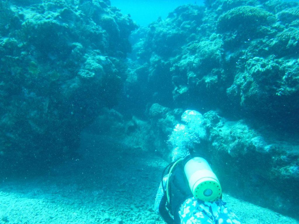 宮古島ダイビングの地形